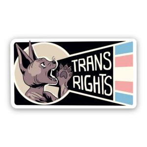 Trans Rights sticker